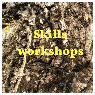 Skills Workshops (2)